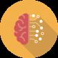 Research Area Neuroplasticity